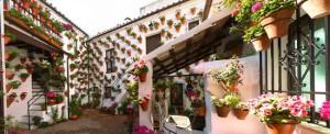 Spain. Cordoba. Patio-Cordoba. EuroSpain Travel